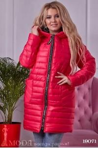Большая куртка 19071